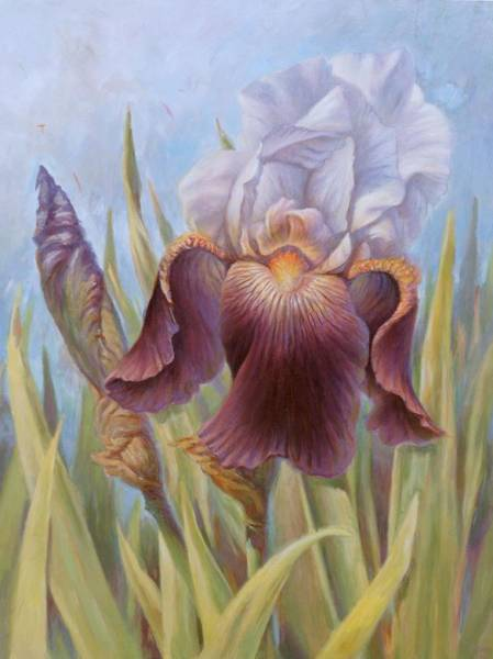 Painting - Iris 1 by Hans Droog