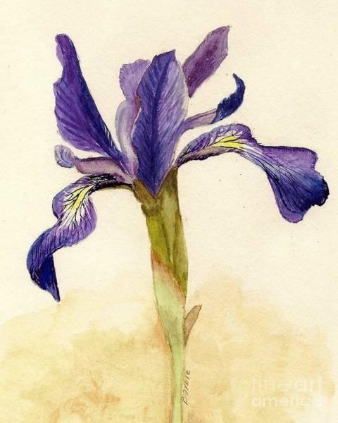 Perennial Painting - Iris by Barbie Corbett-Newmin