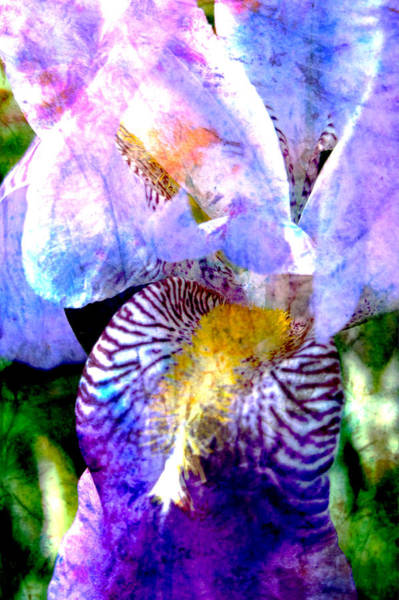 Digital Art - Iris Closeup 2 And Abstract Painting by Anita Burgermeister