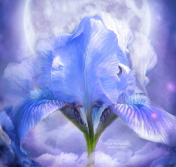 Iris - Goddess In The Moonlite Art Print