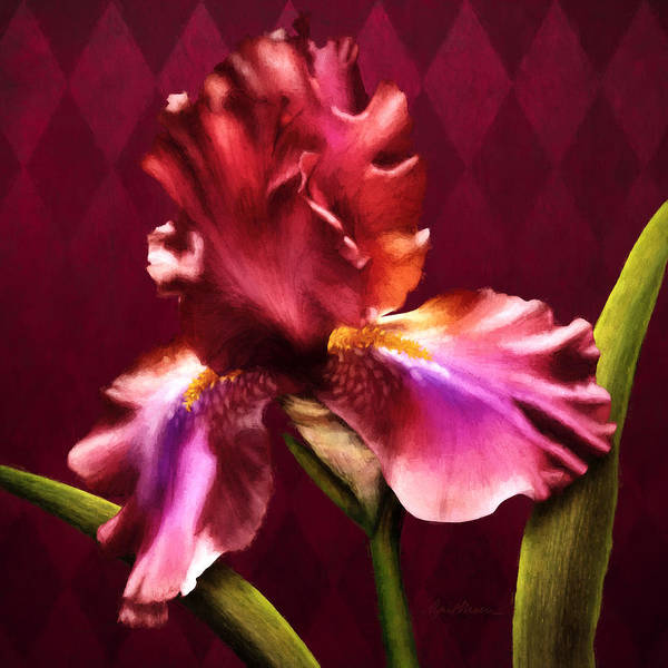 Digital Art - Iris I by April Moen