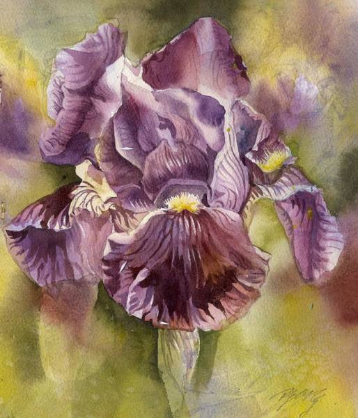 Painting - Iris In Purple by Alfred Ng