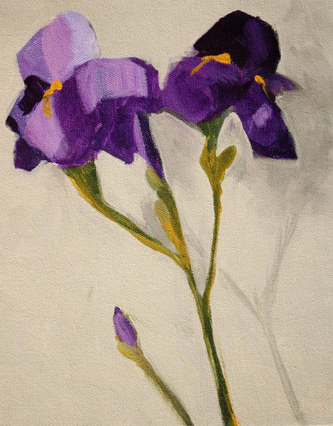 Wall Art - Painting - Iris by Nancy Merkle