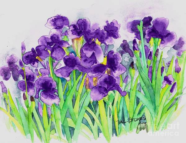 Painting - Iris Patch by Val Stokes
