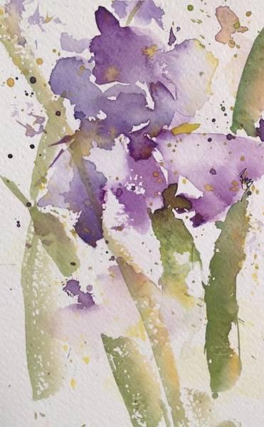 Iris Study #3 Art Print