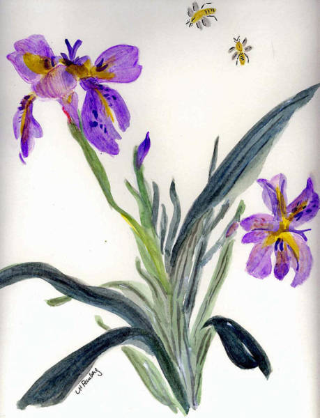 Painting - Iris With Two Bees by Linda Feinberg