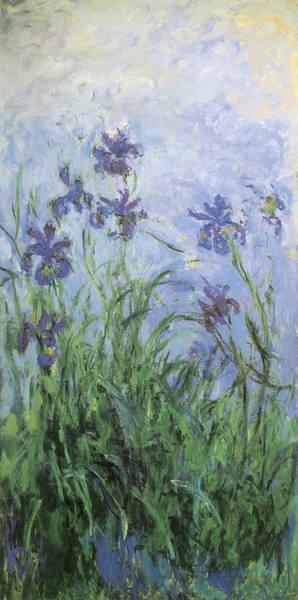Irises Painting - Irises by Claude Monet