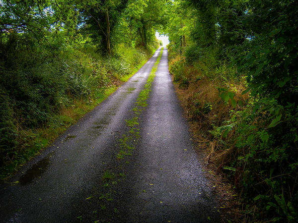 Photograph - Irish Country Road by James Truett