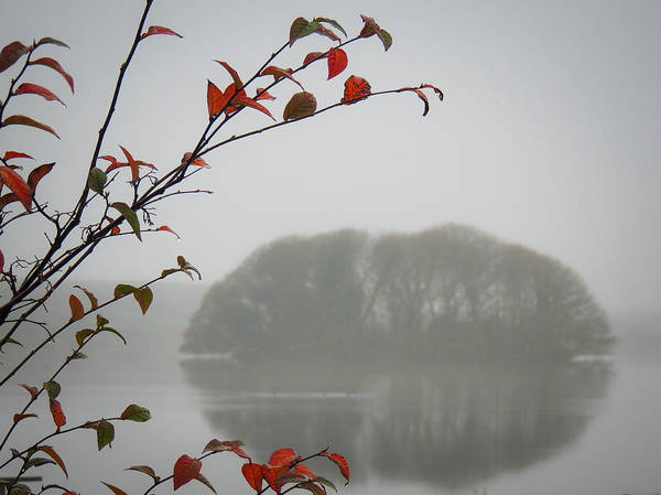 Photograph - Irish Crannog In The Mist by James Truett