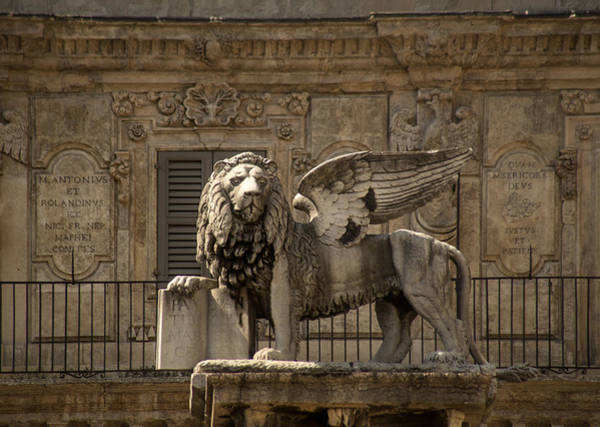 Lion Of St Mark Photograph - Iron Lion Zion.. by A Rey