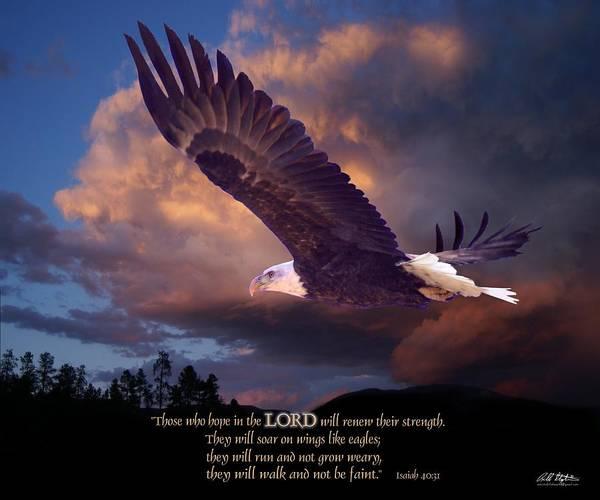 Wildlife Digital Art - Isaiah 40 31 by Bill Stephens