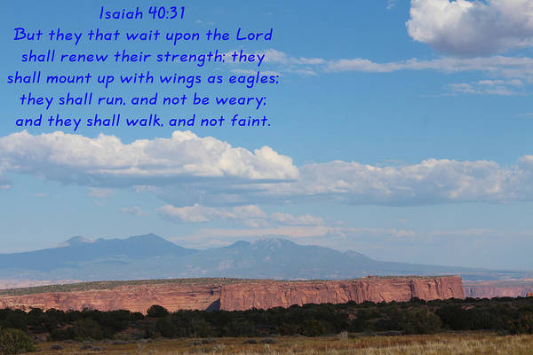 Zion Mixed Media - Isaiah 40-31 Canyonlands N P  by Nelson Skinner