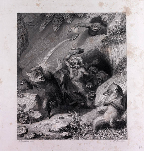 Reynard Wall Art - Drawing - Isegrim And The Monkeys by English School