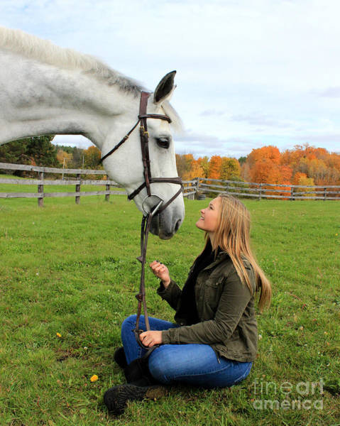 Photograph - Isie Halo 16 by Life With Horses
