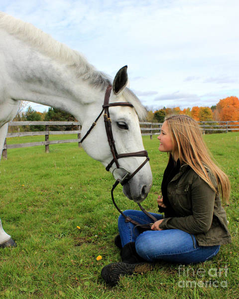 Photograph - Isie Halo 17 by Life With Horses