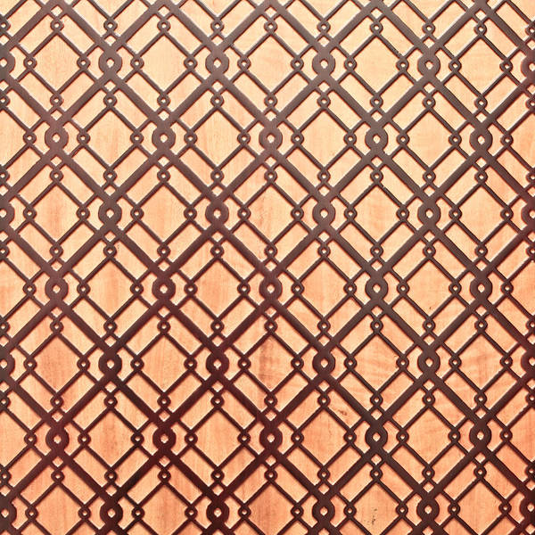 Old Wall Art - Photograph - Islamic Pattern by Tom Gowanlock