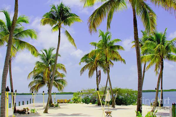 Key West Photograph - Islamorada by Carey Chen