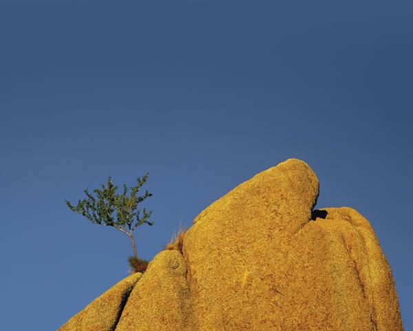 Photograph - Island In The Sky by Paul Breitkreuz