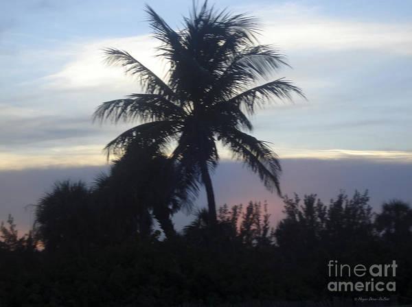 Photograph - Island Sunset by Megan Dirsa-DuBois