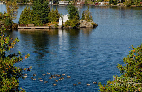 Photograph - Island With A Dock And A Lighthouse by Les Palenik