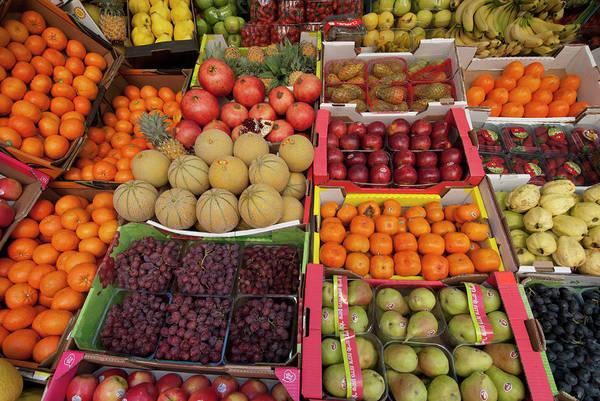 Clark Photograph - Israel, Tel Aviv A Variety Of Fruit by Ellen Clark