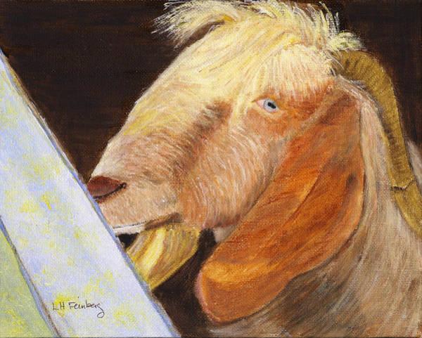 Painting - Israeli Goat by Linda Feinberg