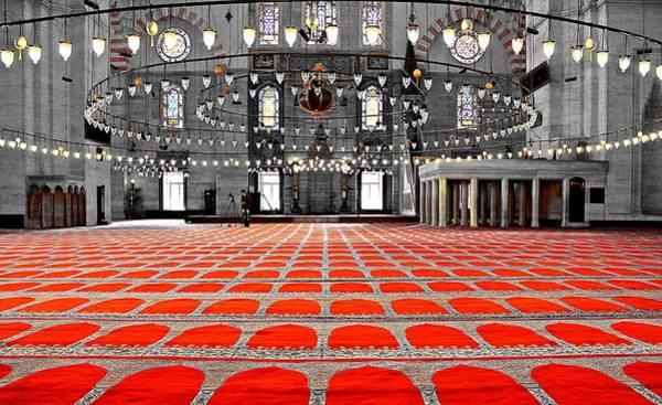 Suleymaniye Mosque Photograph - Istanbul SÜleymaniye Mosque by Michael Ludwig