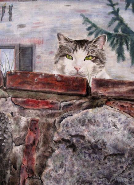 Italian Cat Art Print by Karen Peterson