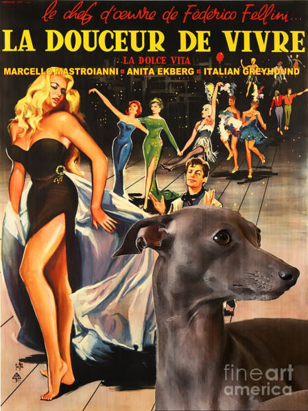 Dolce Wall Art - Painting - Italian Greyhound Art - La Dolce Vita Movie Poster by Sandra Sij