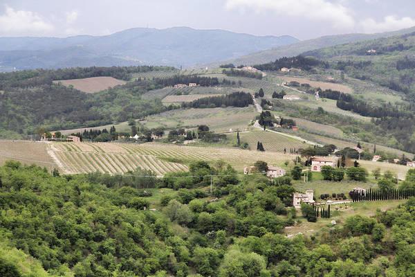 Photograph - Italian Vineyards by Nancy Ingersoll