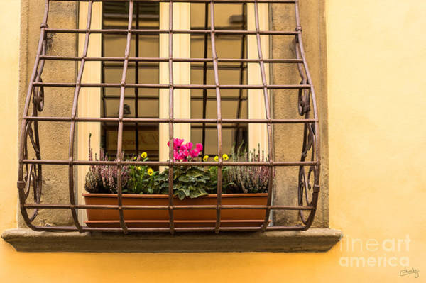 Photograph - Italian Window Box by Prints of Italy