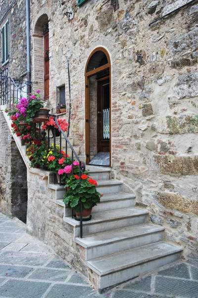 Wall Art - Photograph - Italy, Petroio Flowers Line A Stairway by Jaynes Gallery