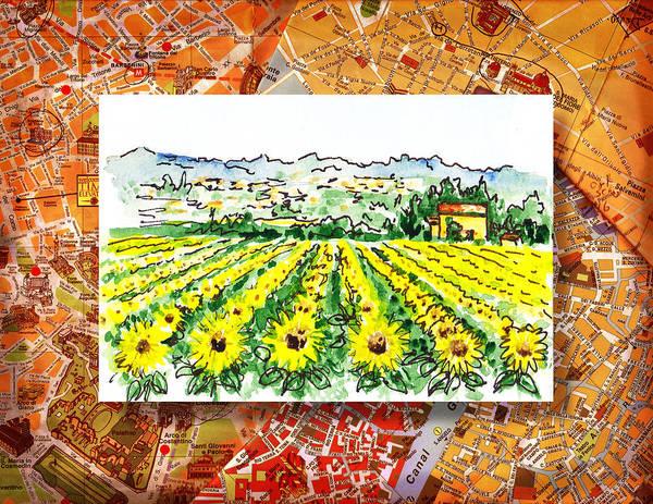 Sketching Painting - Italy Sketches Sunflowers Of Tuscany by Irina Sztukowski