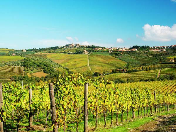 Away From It All Wall Art - Photograph - Italy, Tuscany, Chianti, Panzano by Terry Eggers