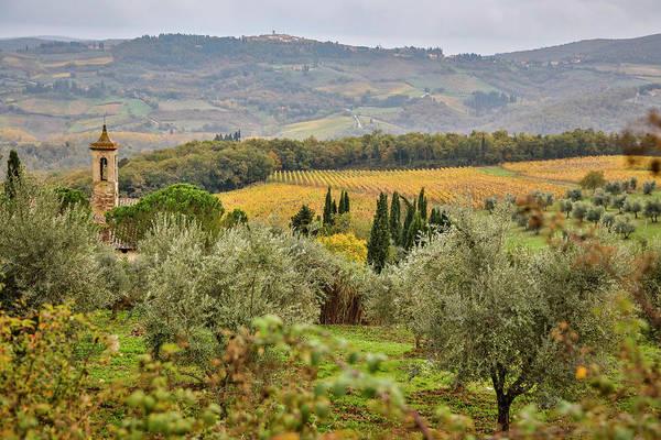 Wall Art - Photograph - Italy, Tuscany, San Gimignano by Hollice Looney