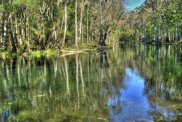 Photograph - Itchetucknee Springs 02 by Donald Williams