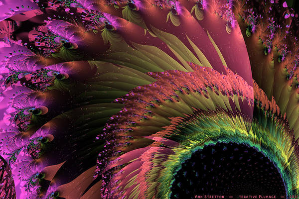 Digital Art - Iterative Plumage  by Ann Stretton