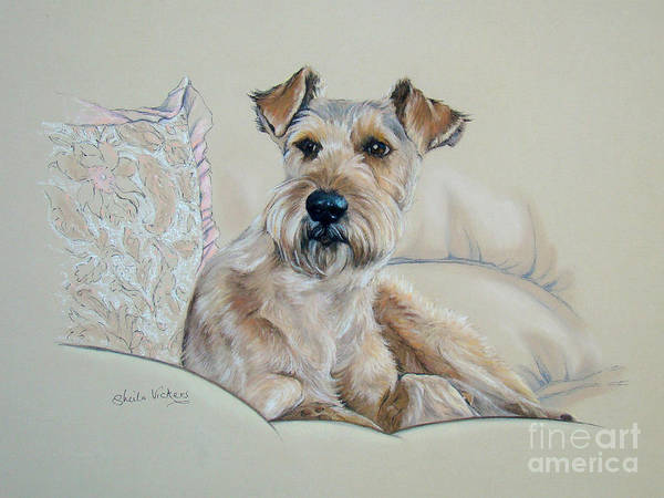 Hair Of The Dog Wall Art - Painting - It's  A Dog's Life by Sheila  Vickers