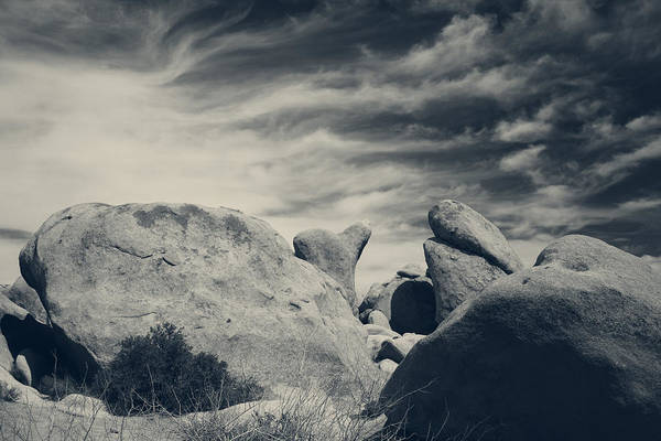 Joshua Tree National Park Wall Art - Photograph - It's A Powerful Thing by Laurie Search