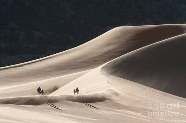 Wall Art - Photograph - It's All Uphill by Sandra Bronstein