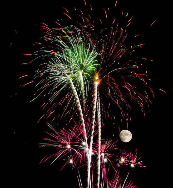 Photograph - Its Raining Red Drops On The Red Flowers - Fireworks And Moon by Penny Lisowski
