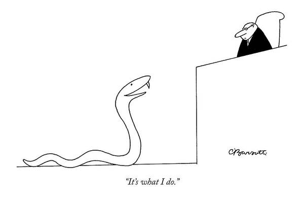 Snakes Drawing - It's What I Do by Charles Barsotti