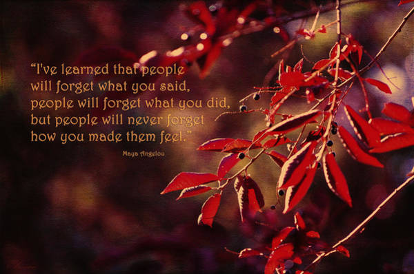 Inspirational Quote Photograph - I've Learned - Maya Angelou by Maria Angelica Maira