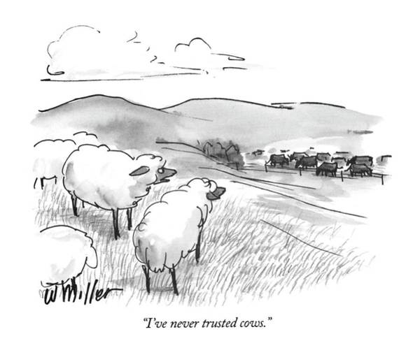 Farmer Drawing - I've Never Trusted Cows by Warren Miller