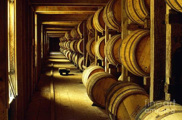 Daniel Wall Art - Photograph - Jack Daniel Whiskey Maturing In Barrels In Old Warehouse At The Lynchburg Distillery Tennessee Usa by David Lyons