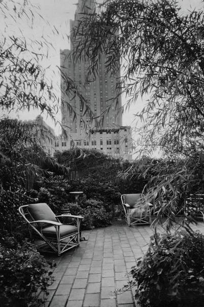 Hemlock Photograph - Jack Little's Garden In New York City by A E Boutrelle