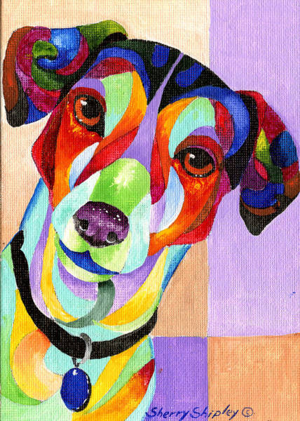 Painting - Jack Russell Terrier by Sherry Shipley