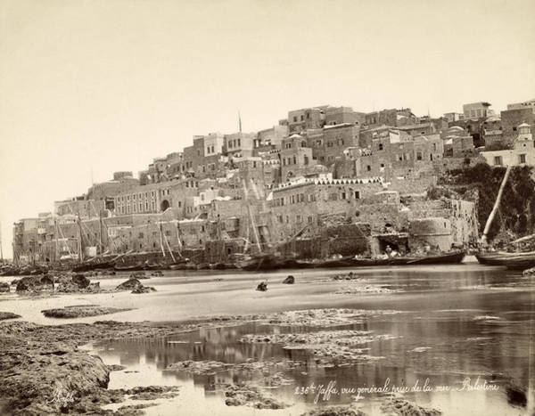Wall Art - Photograph - Jaffa Harbor, C1868 by Granger
