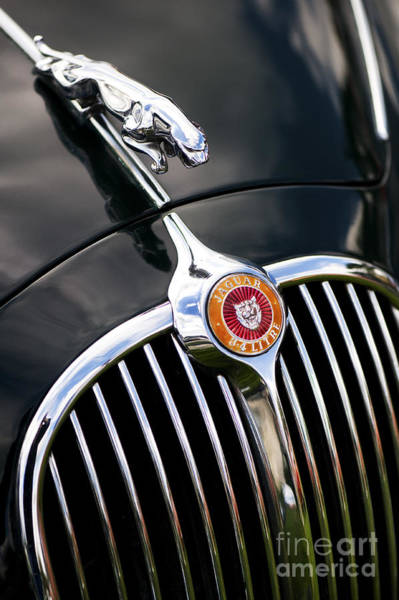 Photograph - Jaguar 3.4 Litre Classic Car by Tim Gainey