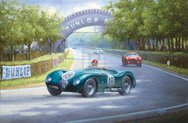 Jaguar Painting - Jaguar D Type by Mike Jeffries
